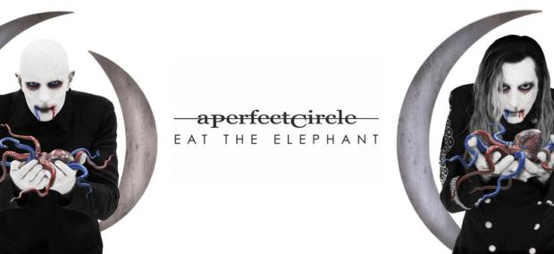 A Perfect Circle Vinyl